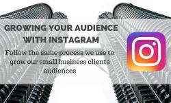 growing instagram audience